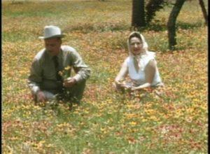 <i>Showcase for the Nation: The Story of Mrs. Lyndon B. Johnson's Beautification Program</i>